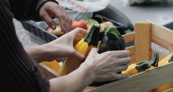 Minnesota FoodShare's Harvest Campaign